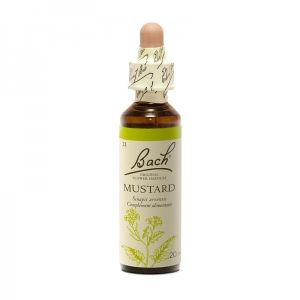 21  Moutarde (Mustard) 20 ml