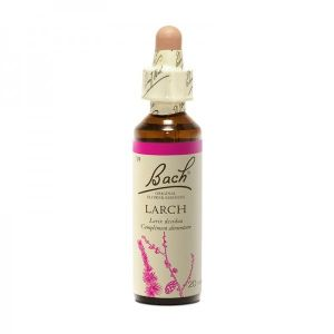 19  Mélèze (Larch) 20 ml