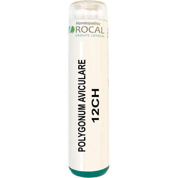 Polygonum aviculare 12ch tube granules 4g rocal