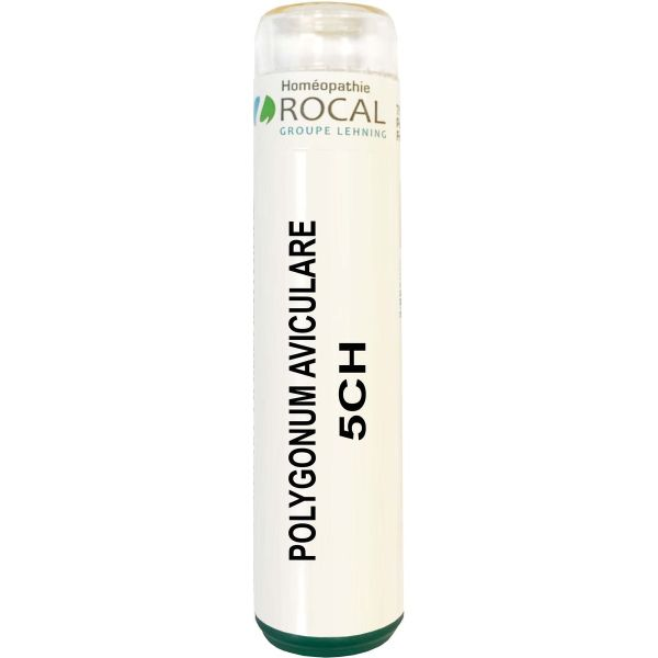 Polygonum aviculare 5ch tube granules 4g rocal