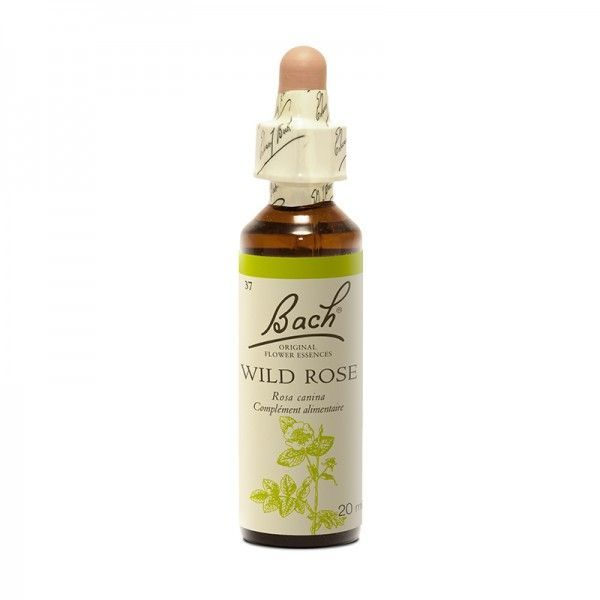 37 Eglantier (Wild rose) 20 ml
