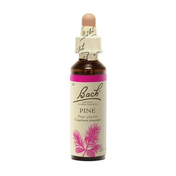 24  Pin Sylvestre (Pine) 20 ml